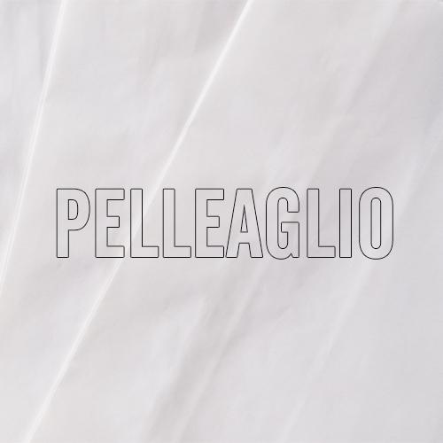 sacchetto-pelle-aglio